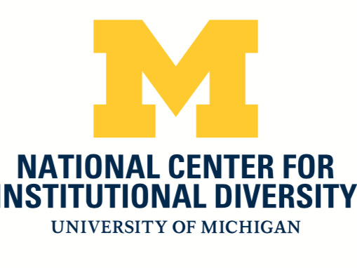 Michigan shares insights from academic-level (not chief) diversity officers
