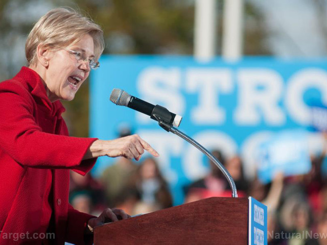 """Elizabeth Warren's $52 trillion """"Medicare for All"""" health care plan would push tax rates above 100% for some"""