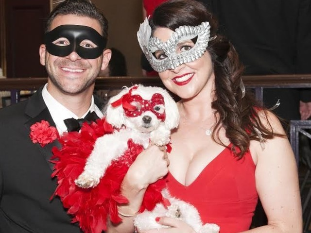 There Was A Fancy Masquerade Ball For Dogs And It Did Not Disappoint