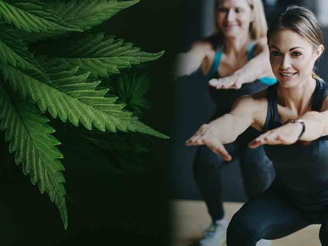 Cannabis Found to Increase Exercise Enjoyment and Motivation