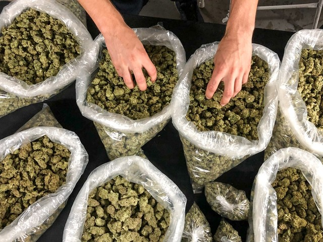 Understanding the growing unlicensed weed market at an LA 'Sesh'