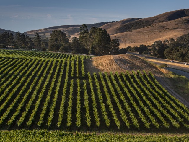 This California town will pay you to visit