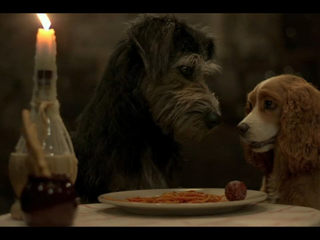 Live action 'Lady and the Tramp' to debut on Disney+