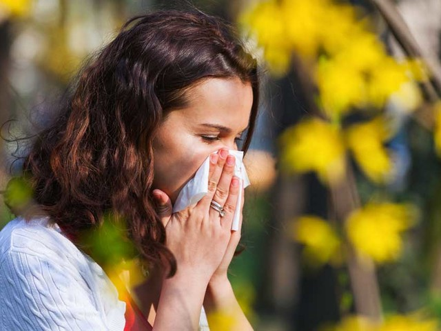 5 Foods to Help Fight Seasonal Allergies