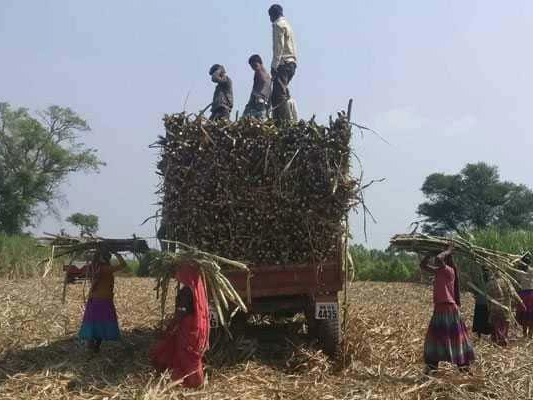Industry Body Ficci For Hike In Farmer Income Support