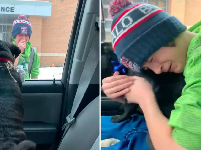 Family Surprises Boy At School With His Lost Dog