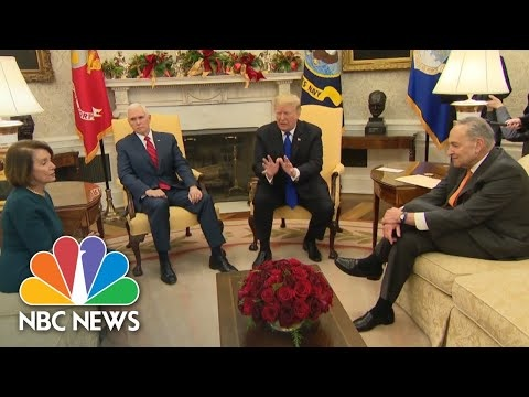 Nancy Pelosi, folk hero, stood up to Donald Trump, then insulted his manhood