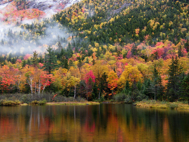 Is Climate Change Ruining Fall?