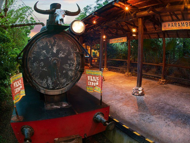 New Progressive Dining Experience Coming to Disney's Animal Kingdom in July