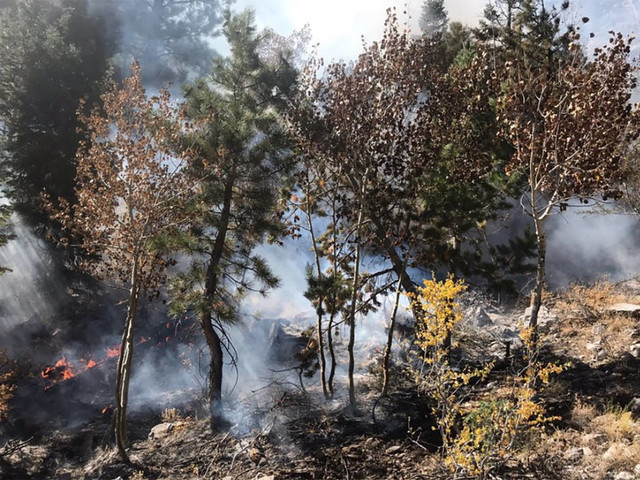 Crews battling fire in Mary Jane Falls area at Mount Charleston