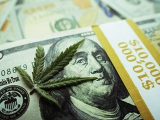 5 Tips on How to Invest in Marijuana Stocks Successfully