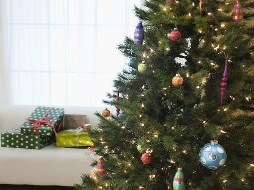 How to keep your Christmas tree looking fir-bulous throughout the festive season