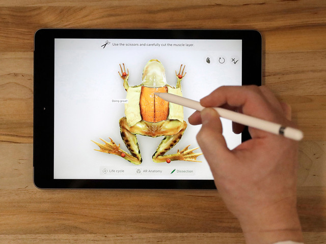 Don't spend $130 on an Apple Pencil when this alternative is only $23