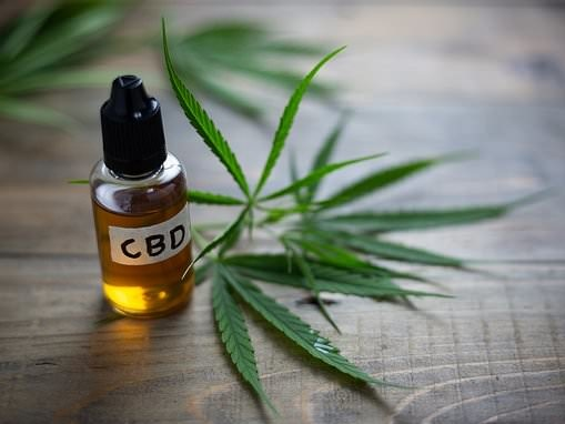 CBD Google searches surge in the US as experts call it 'snake oil'