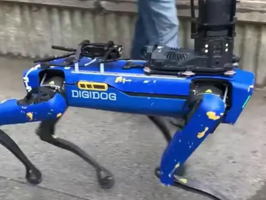 NYPD Puts Down Robot Dog After Backlash