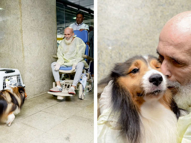 Doctor Surprised By Patient's Improvement After Visit From His Dog