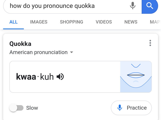 Google helps you practice pronouncing new words with mobile Search