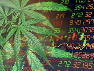 The Top Cannabis Stock News Stories of the Week