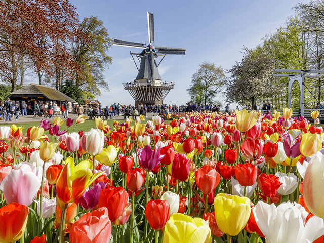 Floral Travel Blooms: USTOA Tour Operators Spotlight Colorful...