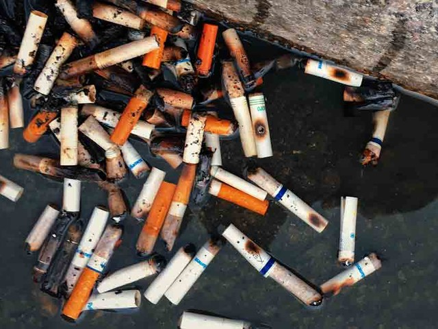 Why Cigarette Butts Are Still Among the Worst Forms of Pollution
