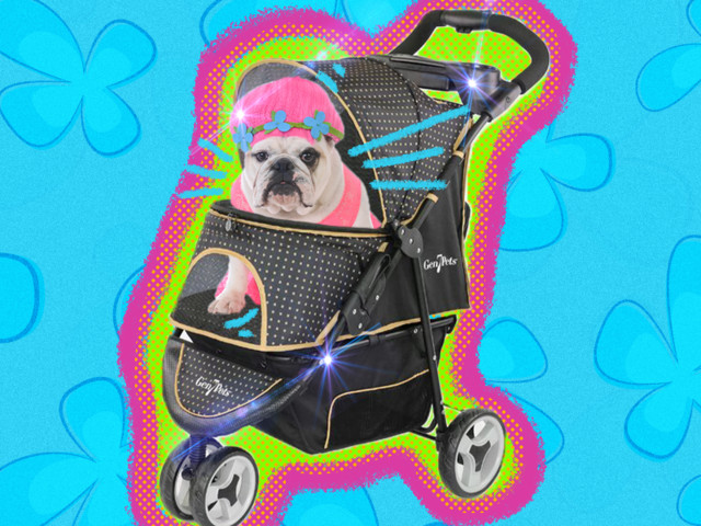These Dog Strollers Are Perfect For Being Super Extra