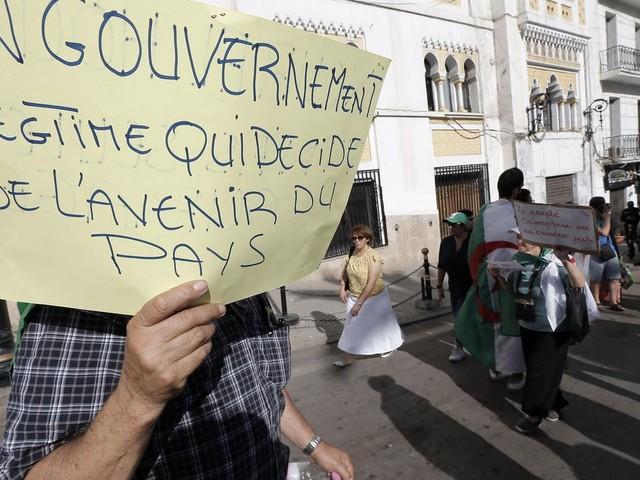 Eggs, protests, apathy mar Algeria's presidential campaign