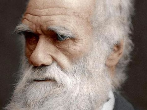 """Over 1000 'Scientists' Sign """"Dissent From Darwinism"""" Statement"""