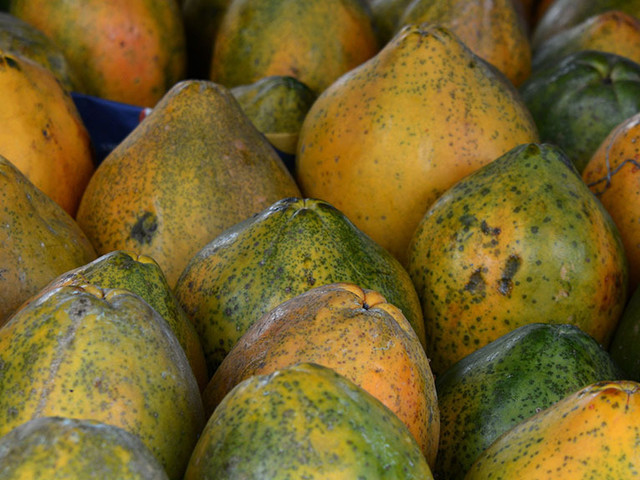 Salmonella Outbreak Linked To Papayas Imported From Mexico, Dozens Sickened