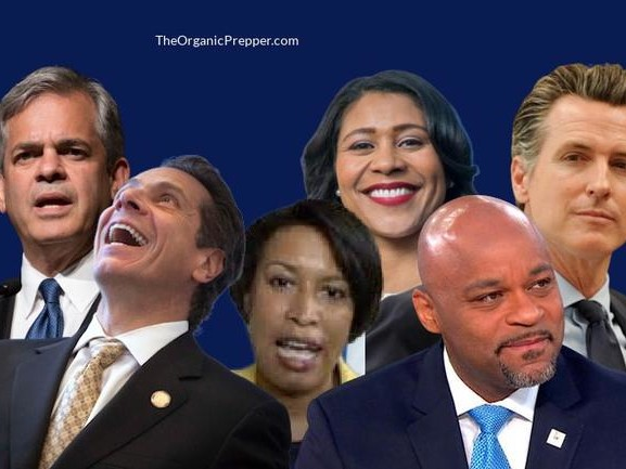 These Are The Hypocritical Government Officials Who Demand You Stay Home While They Party