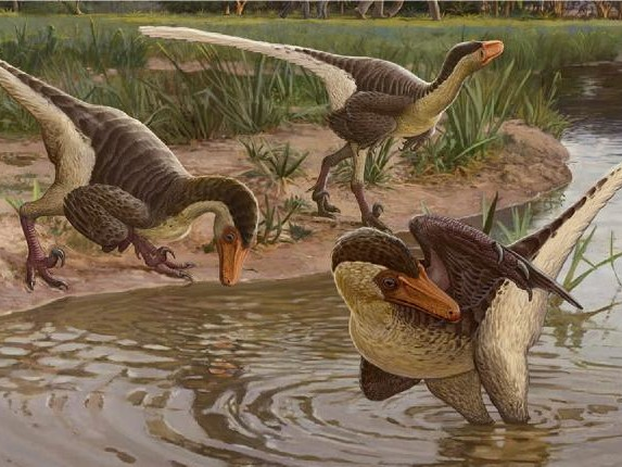 Feathery find: One of the last dino raptors lived in New Mexico