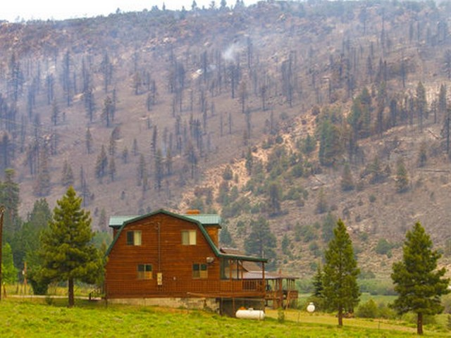 Utah officials blame lack of logging for major wildfire