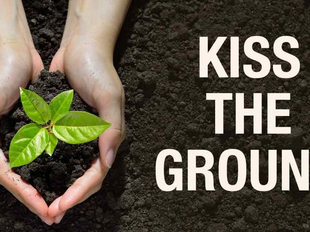 Regenerative gardening and living, an online program