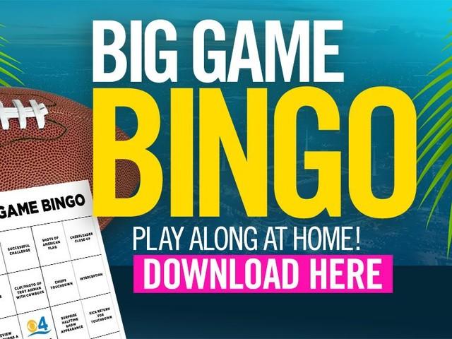Big Game Bingo: Play Along As You Watch Super Bowl 54 In Miami