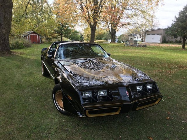Hemmings Find of the Day – 1981 Pontiac Turbo Trans Am