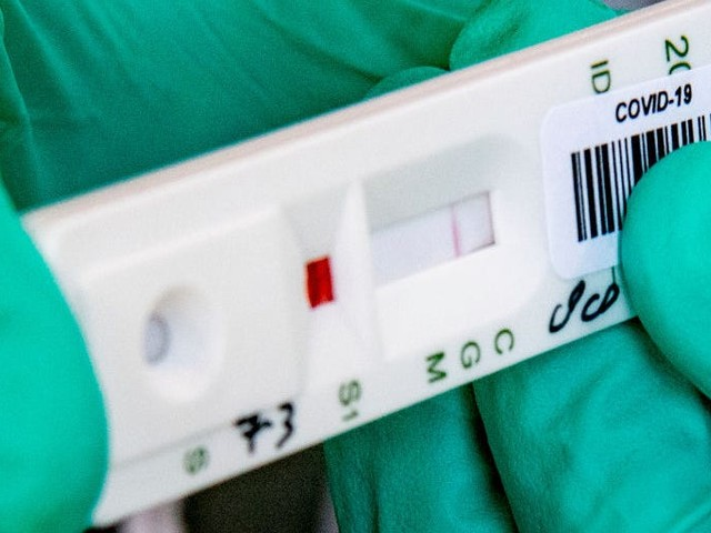 The difference between diagnostic, antibody, and antigen tests for the coronavirus
