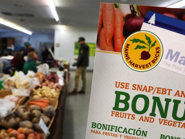 Hundreds of thousands of Americans to lose food stamps under new Trump administration policy
