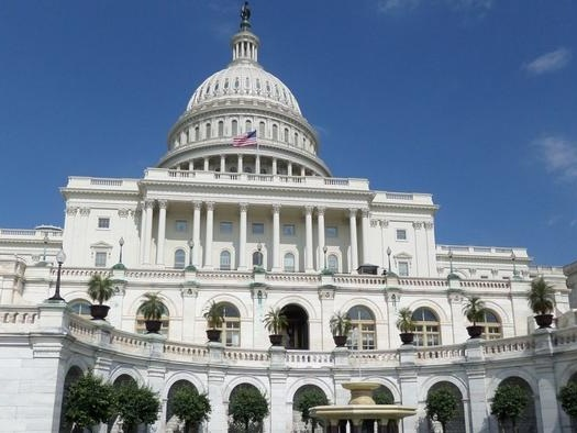 Peter Schiff: Congress Is The Real Threat, Not Protests