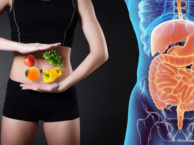 Magical Microbes — How to Feed Your Gut