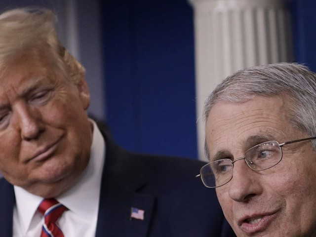 Trump keeps touting a decades-old malaria pill as a coronavirus 'game changer', undercutting his top infectious-disease expert