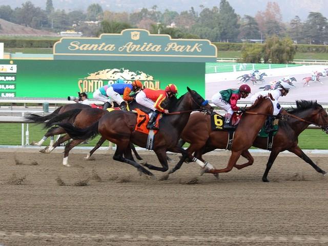 Horses keep dying at Santa Anita. Why can't California shut down racing?