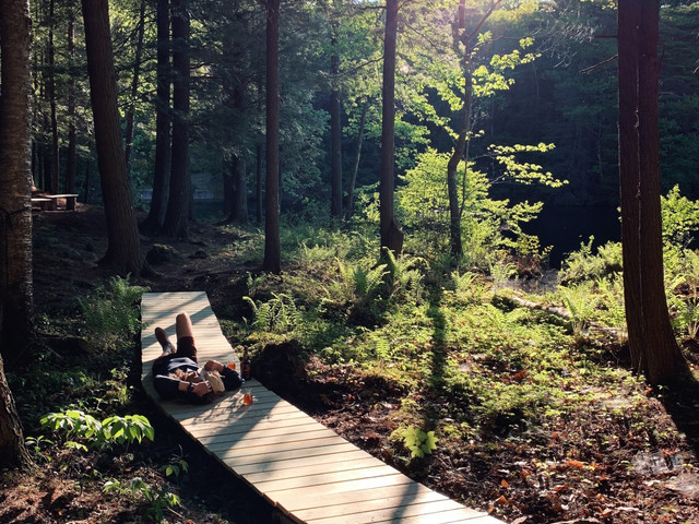 A DIY Boardwalk at an Off-the-Grid Cabin (That Only Took One Afternoon)