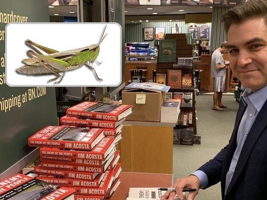 "Jim Acosta Sells Whopping 30 Books At ""Surprise"" Signing"