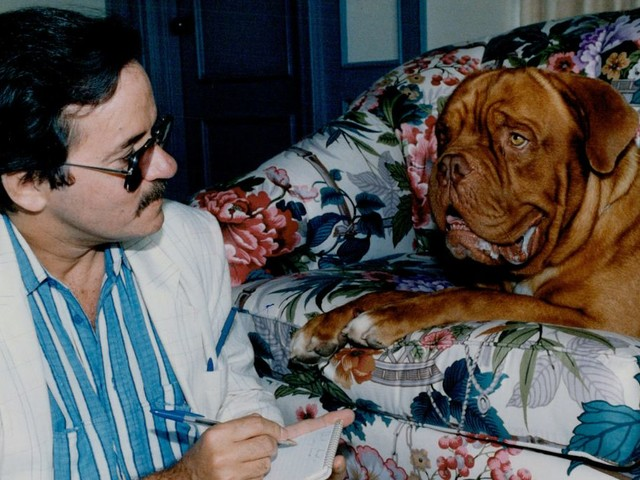 Disney+'s Turner & Hooch reboot casts a bunch of humans, refuses to show us Hooch