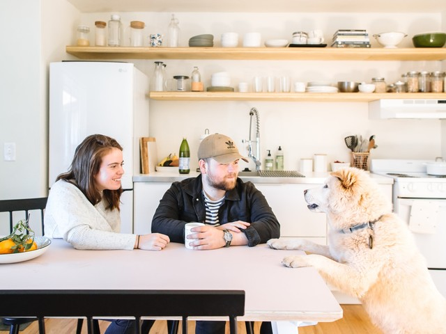 A Couple & Their Cute Pup Share 550 Square Feet in Detroit — House Tour