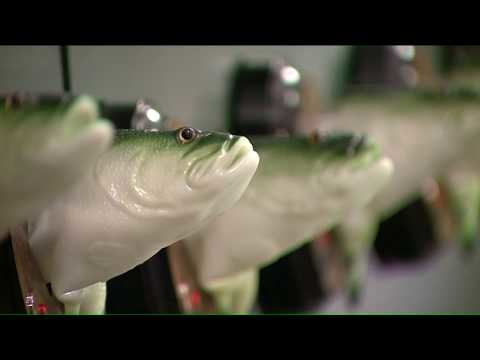 Bar Installs 70 Big Mouth Billy Bass Plaques to Sing in Unison
