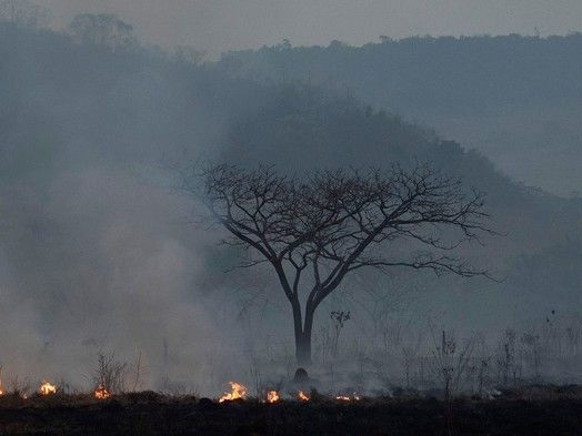 Native Languages In Danger As Fires Rage in The Amazon Rainforest