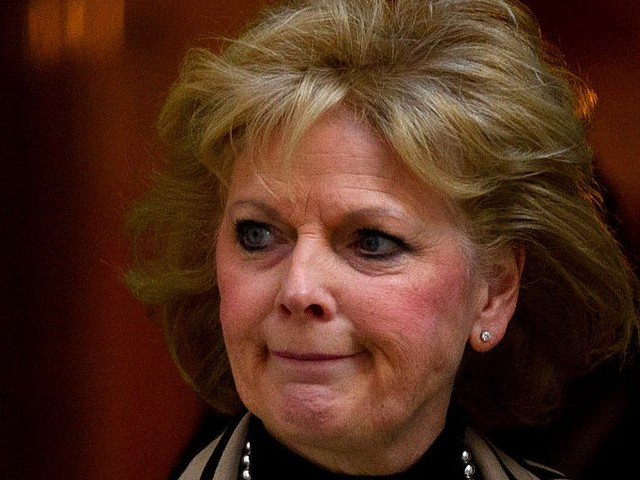 Anna Soubry interview: My government needs a 'reality check' on Brexit