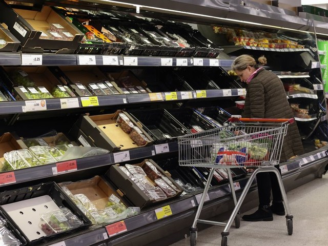 The Wide World of Groceries, Part 1 | My Opinion Is Fact