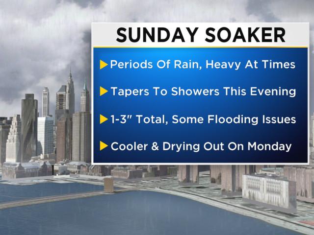 2/11 CBS2 Sunday Morning Weather Headlines