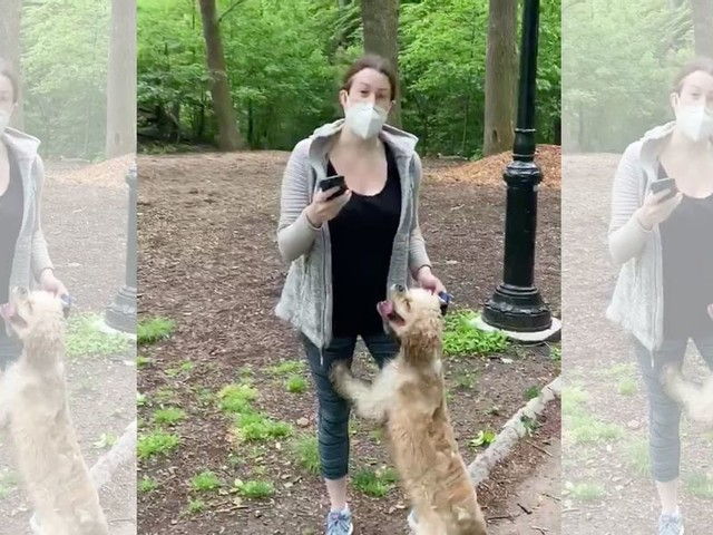 NY Times circulates false claim about woman fired over viral Central Park racism video